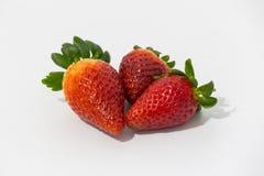 Foto av jordgubbar Arkivfoton