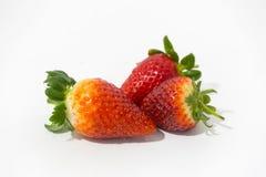 Foto av jordgubbar Arkivfoto