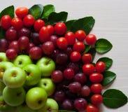 Foto av ny frukt Fotografering för Bildbyråer