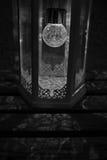 Foto in bianco e nero di una lanterna illuminata che getta le belle ombre floreali su un banco di legno Immagini Stock Libere da Diritti