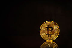 Foto Bitcoins de oro en fondo negro concepto comercial de moneda crypto Fotografía de archivo libre de regalías