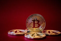 Foto Bitcoins dourado no fundo vermelho conceito de troca da moeda cripto Foto de Stock