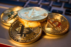 Foto Bitcoins dourado no portátil conceito de troca da moeda cripto Fotos de Stock