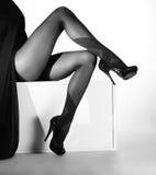 Foto blanco y negro de piernas hermosas en medias agradables Fotografía de archivo libre de regalías