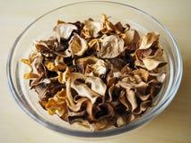 Foto bonita da decoração seca inoperante da folha Foto de Stock