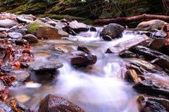 Foto borrada do rio do movimento nas madeiras do parque nacional de Great Smoky Mountains imagem de stock