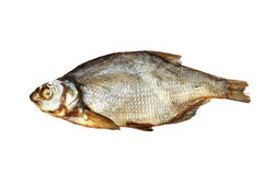 Foto of bream lying on white background. Close-up foto of bream lying on white background Royalty Free Stock Photos