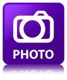 Foto (camerapictogram) purpere vierkante knoop Royalty-vrije Stock Afbeelding