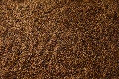 Foto cercana para arriba de los granos de la malta para cervezas más oscuras Foto de archivo