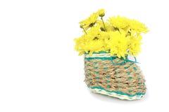 Foto común: artificial hermoso en un florero de la ramita en el backgro blanco Fotografía de archivo