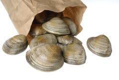 Foto común de almejas en bolsa de papel Fotografía de archivo