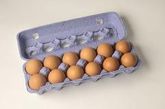 Foto común de los huevos docena Foto de archivo