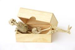 Foto común: Esqueleto humano en la caja de madera, aún vida en el CCB blanco Foto de archivo libre de regalías