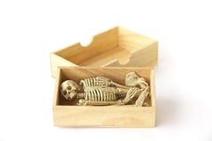 Foto común: Esqueleto humano en la caja de madera, aún vida en el CCB blanco Imagenes de archivo