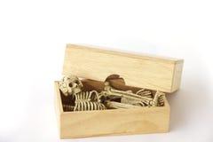 Foto común: Esqueleto humano en la caja de madera, aún vida en el CCB blanco Imagen de archivo libre de regalías
