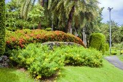 Foto con un paisaje tropical Selva y palmeras Océano, arena El concepto de reconstrucción y de viaje turísticos Llamarada de la l foto de archivo