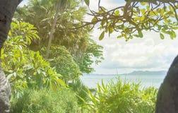 Foto con un paisaje tropical Selva y palmeras Océano, arena El concepto de reconstrucción y de viaje turísticos Llamarada de la l imágenes de archivo libres de regalías