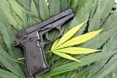 A foto conceptual da marijuana ilegal do crime da arma e a marijuana folheiam imagem de stock royalty free