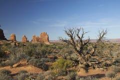 Foto conservada em estoque da formação de rocha vermelha, parque nacional dos arcos Imagens de Stock Royalty Free