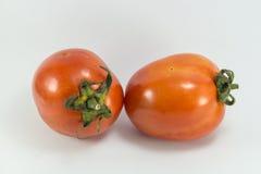 Foto conservada em estoque de dois tomates isolados no fundo branco fotografia de stock royalty free