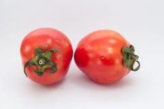 Foto conservada em estoque de dois tomates isolados no fundo branco fotos de stock