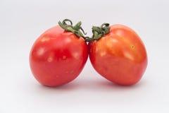 Foto conservada em estoque de dois tomates isolados no fundo branco imagem de stock royalty free