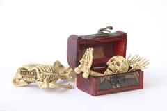 Foto conservada em estoque: Esqueleto humano na caixa de madeira, ainda vida no CCB branco Foto de Stock