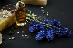 Foto cosmética orgánica Cosméticos y crema de la hierba de los componentes han imagen de archivo