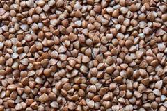 Foto cruda del grano saraceno Immagini Stock