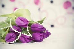 Foto d'annata dei fiori porpora del tulipano Fotografie Stock