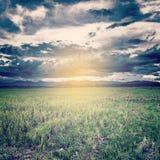 Foto d'annata delle nuvole di tempesta e del prato del campo Fotografia Stock