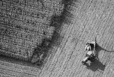 Foto da antena da colheita de milho fotografia de stock royalty free