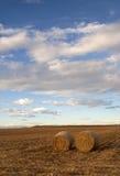 Foto da bala de feno em Colorado rural Imagens de Stock Royalty Free