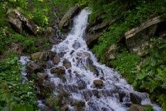 A foto da cachoeira pequena cercada por wildflowers e as hortaliças nas montanhas de Dzenbronia ajardinam fotos de stock
