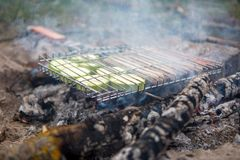 Foto da grade para o assado com vegetais e salsichas no fogo na floresta, fotografia de stock
