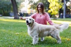 A foto da morena com cão agreen sobre o gramado Imagem de Stock Royalty Free
