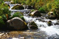 Foto da natureza - o rio da montanha da água de mola disparou com exposição longa e o Stony Creek bonito em Cáucaso norte foto de stock