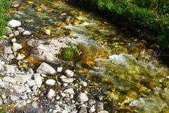 Foto da natureza - rio da montanha da água de mola e o Stony Creek bonito em Cáucaso norte fotografia de stock royalty free