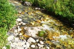 Foto da natureza - rio da montanha da água de mola e o Stony Creek bonito em Cáucaso norte imagens de stock royalty free