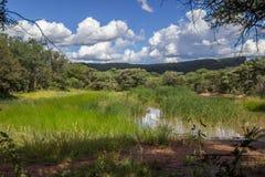 Foto da paisagem sobre uma lagoa Imagens de Stock Royalty Free