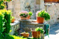 Foto da peça acolhedor da rua completamente das flores em uns potenciômetros e em umas plantas Imagens de Stock