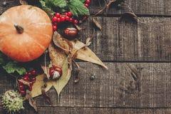 Foto da queda, abóbora bonita com folhas e bagas em rústico Fotografia de Stock