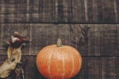 Foto da queda, abóbora bonita com folhas e bagas em rústico Fotografia de Stock Royalty Free
