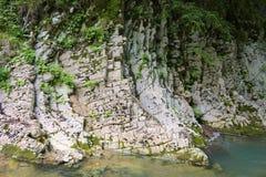 Foto da rocha, floresta, montanhas, rio da montanha Fotos de Stock