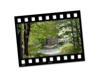 Foto da tira da película Imagem de Stock Royalty Free