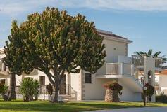 Foto das casas perto de Ayia Napa chipre Imagens de Stock Royalty Free