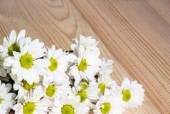 Foto das flores bonitas brancas no fundo de madeira imagens de stock