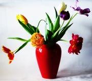 Foto das flores em um vaso vermelho imagens de stock royalty free