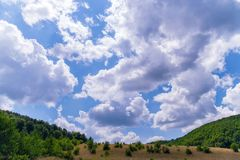Foto de arriba a abajo, del campo con la hierba seca, con los arbustos caótico localizados en el cielo nublado Fotos de archivo libres de regalías