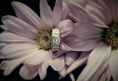 Foto de Engament con el anillo fotografía de archivo libre de regalías